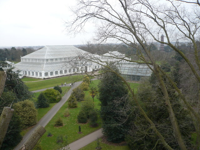 View of the Temperate House from the Treetop Walkway, Kew Gardens