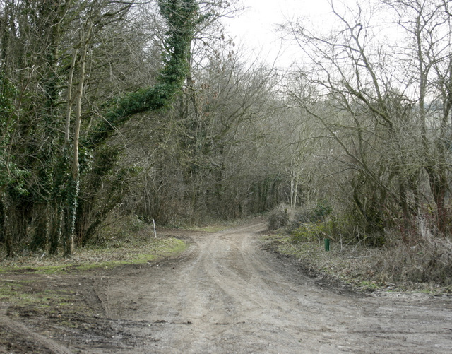 2009 : At the end of Weavern Lane