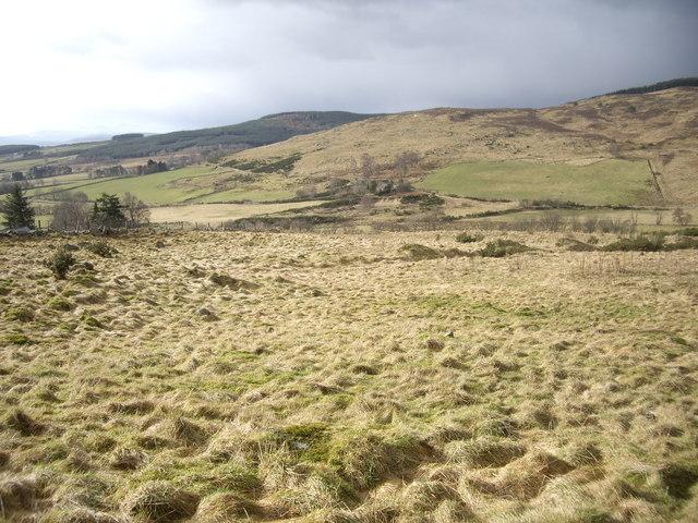 Rough grazing above Bogenchapel