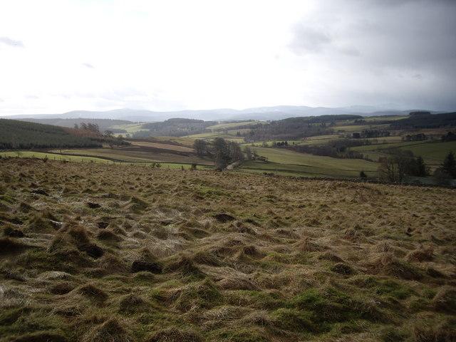 View down valley of Beltie Burn