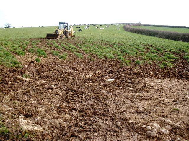 Grazing land, on Woodlands Farm, near Littleham