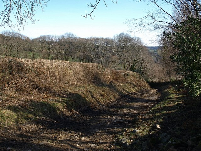 Bridleway to Michelcombe