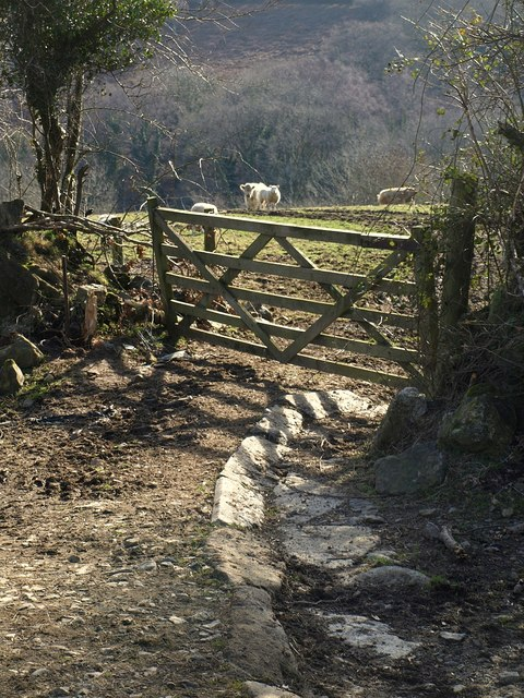 Cut-off on Holne Bridleway 4