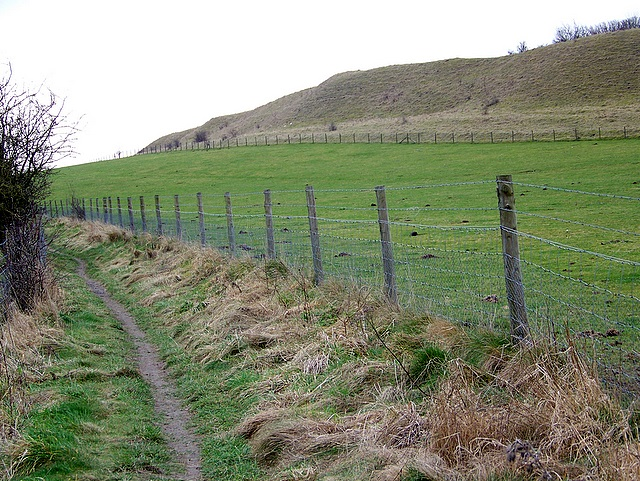 Bridleway, Old Sarum