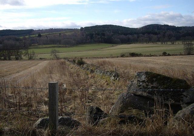 Field drain at Wester Beltie