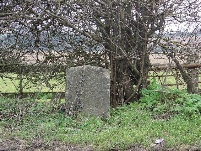Milestone near Old Sarum