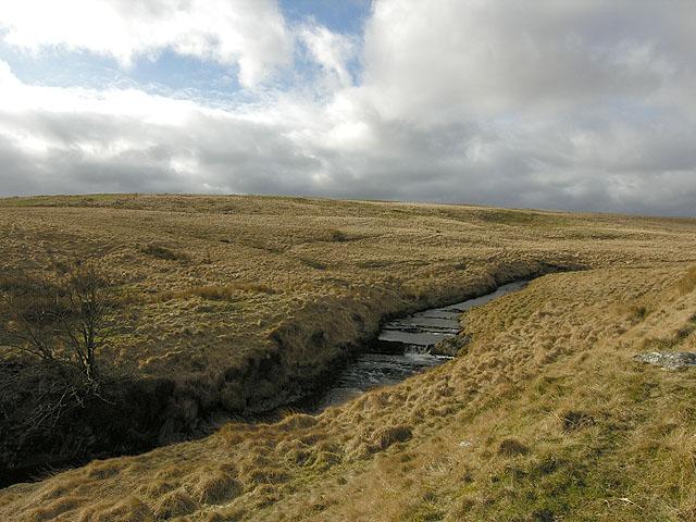 Lower slopes of Esgair Dderwen