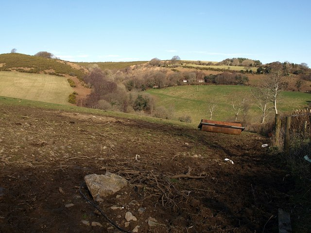 Field above Great Combe