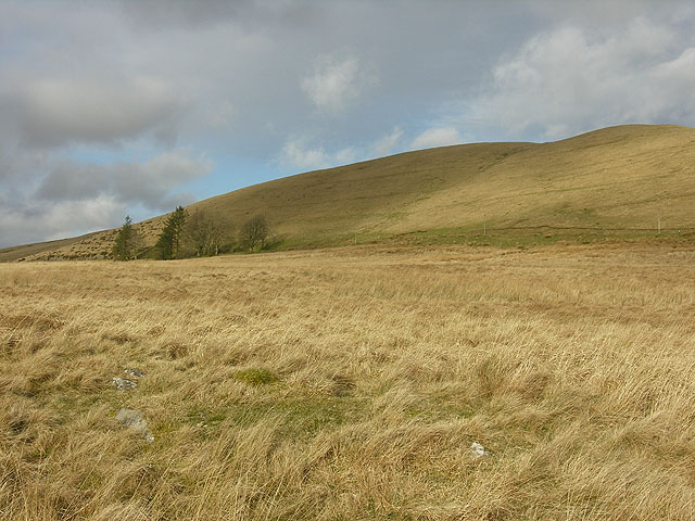 Rough grazing north of Abergwngu