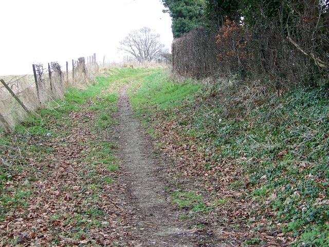 Bridleway to Winterbourne Earls