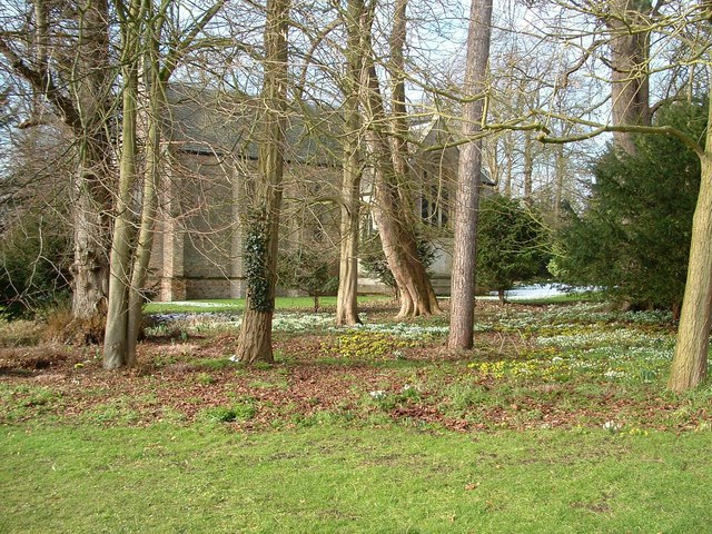 Snowdrops and Aconites, Oxburgh Hall gardens