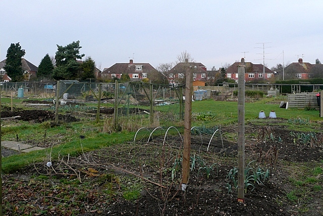 Bartlemy Road allotments