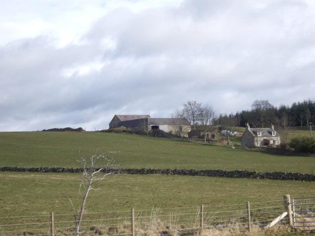 Minew farm