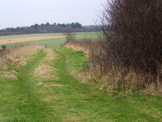 Bridleway to Great Durnford