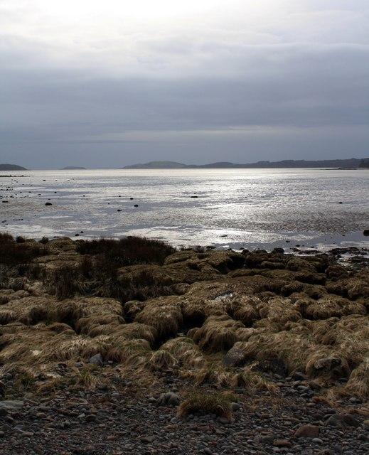 Sunshine on Mudflats
