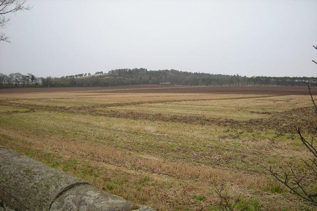 Farmland near Heatherstacks, Forfar