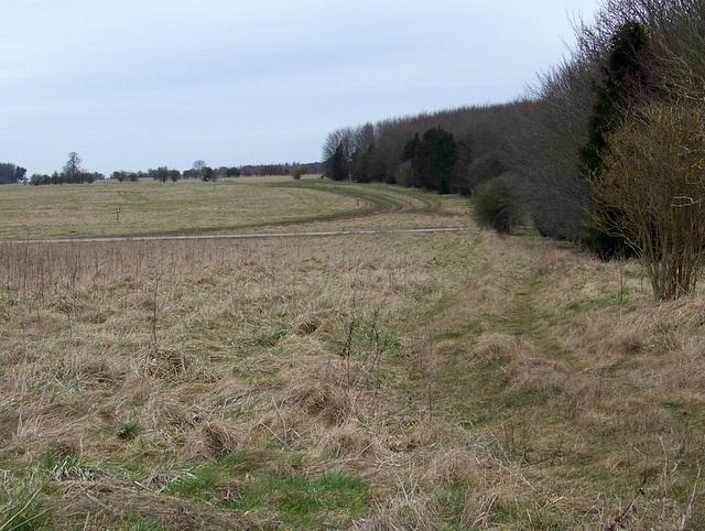 Bridleway to Beach's Barn