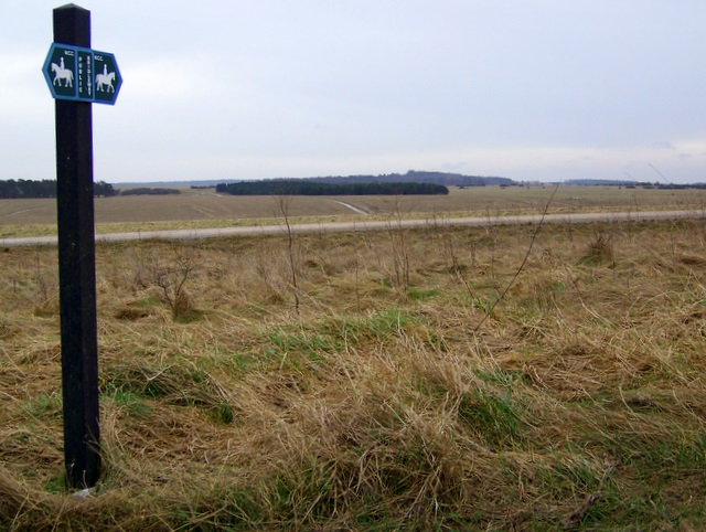 Bridleway to Figheldean Down