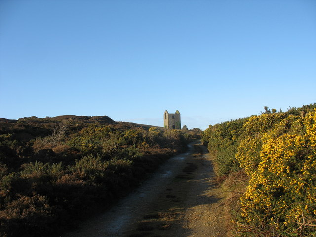 Gorse-lined track near the Pearl Shaft engine house