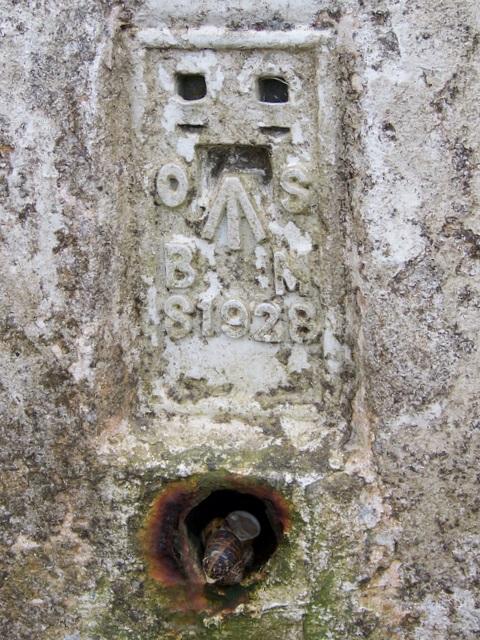 Flush bracket on Trig Pillar