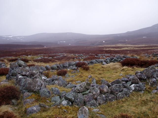 Ruins of Ruighmagaig
