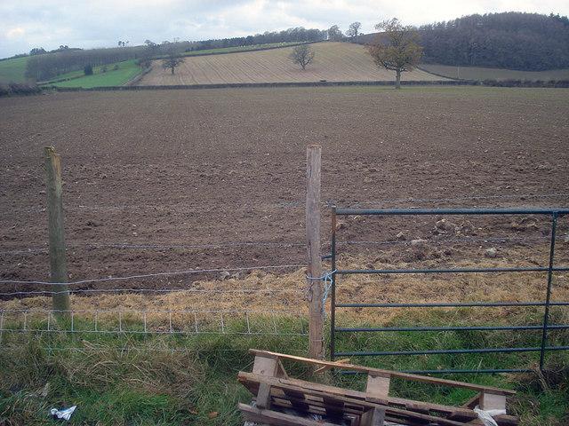 Farmland west of Yatton Marsh