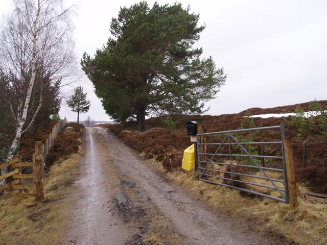 Foregin road end