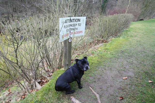 Warning Sign on Public Footpath