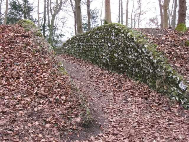 Footpath cut through bank in Wendover Woods