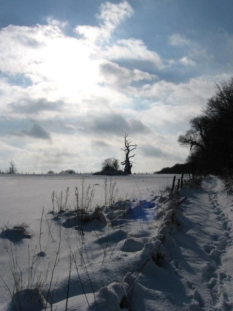 Snowy South East