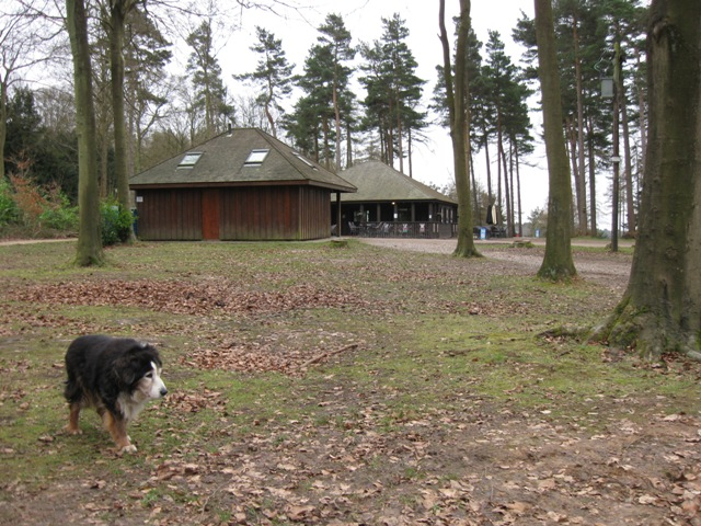 Visitor Facilities, Wendover Wood