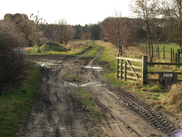 The former Driffield to Market Weighton Railway trackbed