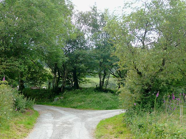 End of lane south east of Tregaron, Ceredigion