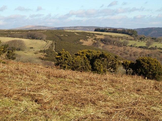 Edge of Holne Moor