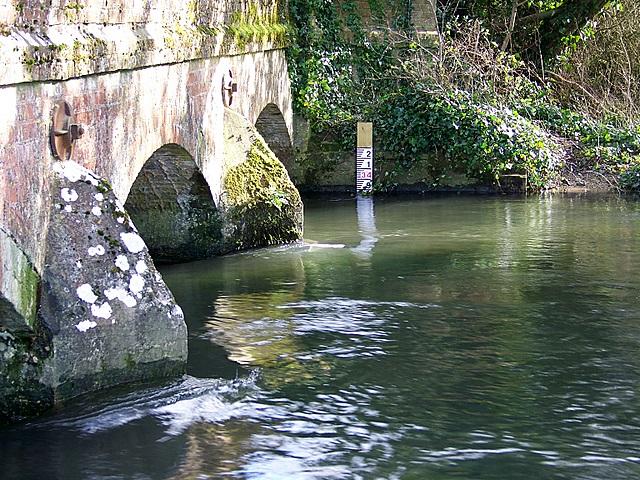 Frome Bridge near Woodsford