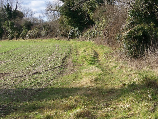 Footpath to Woodsford