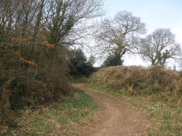 Shortwood Lane