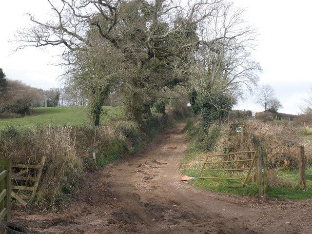 Track to Squabmoor