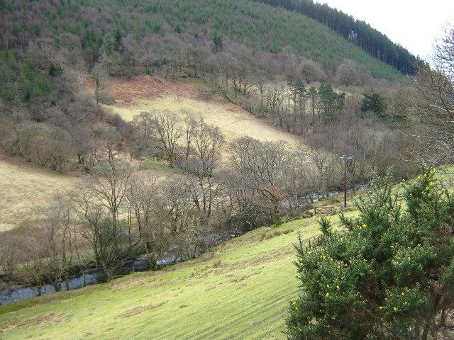 Afon Dulas near Corris
