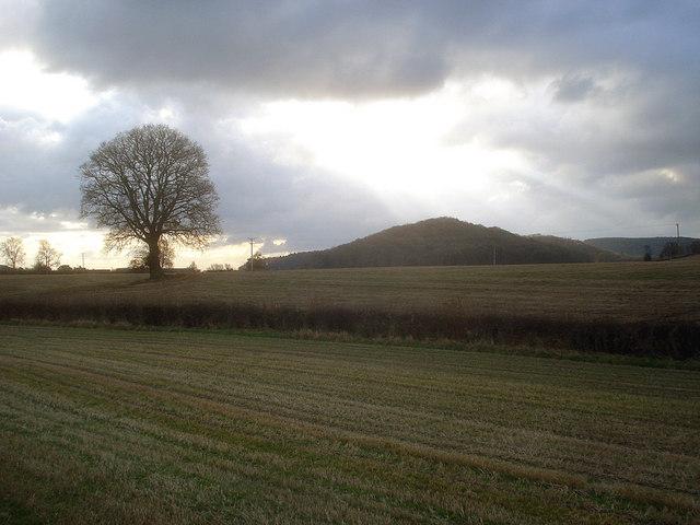 Arable land north of Yatton