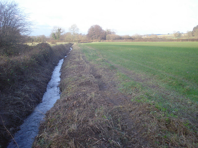 Allcock's Brook