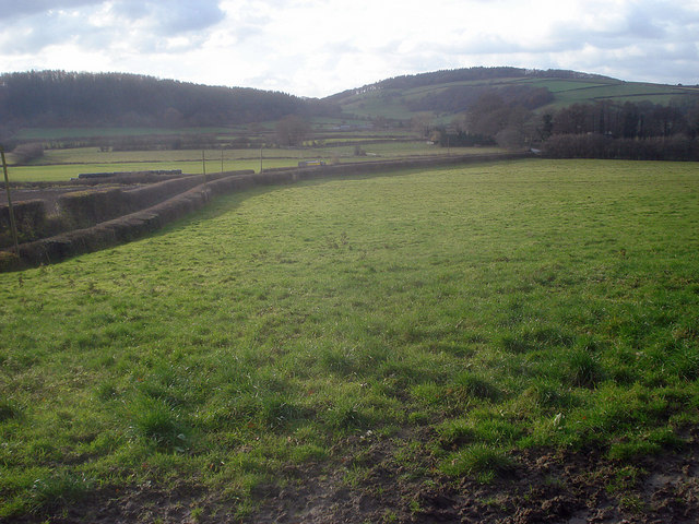 Grazing land east of Woodhampton Hill