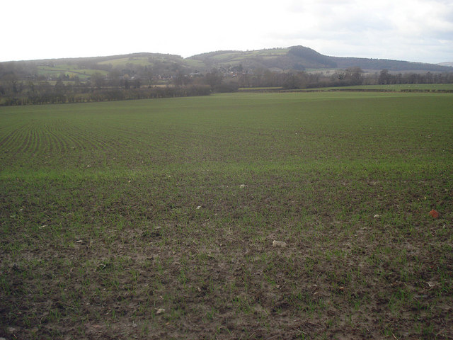 Arable land east of Wigmore