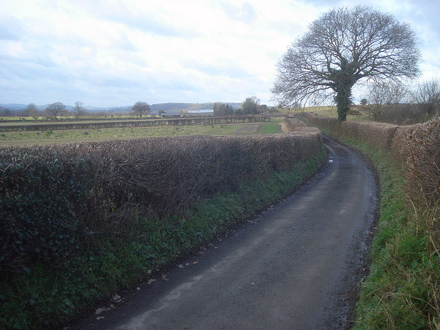 Lane to Leinthall Barns Farm