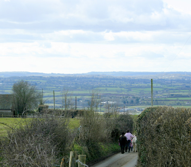2009 : Lane over Naish Hill with horses