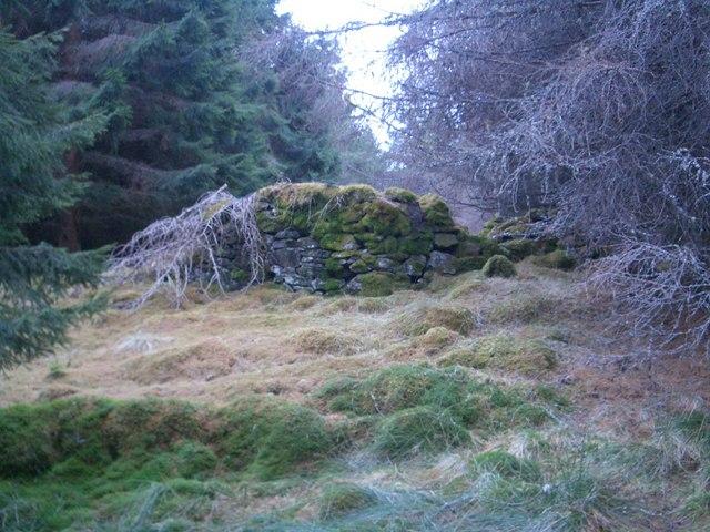 Tomnafall ruins