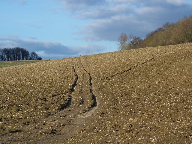Bridleway to Higher Bockhampton