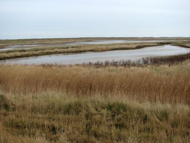 Arnold's Marsh