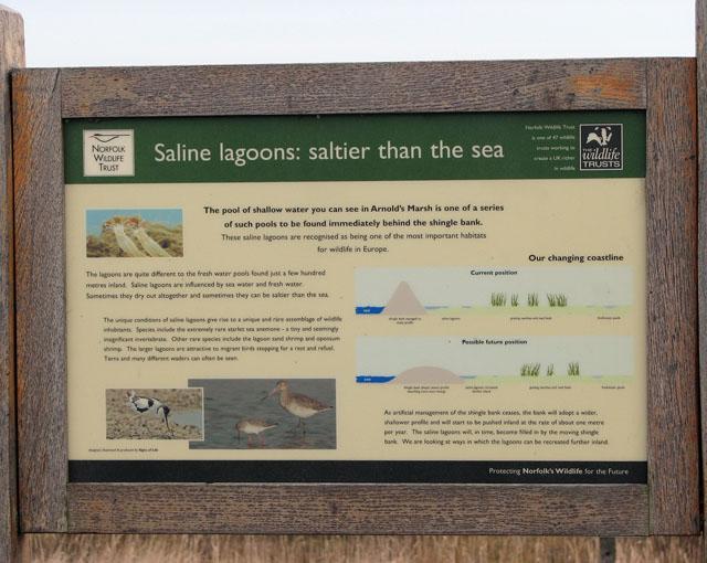 Saline lagoons explained