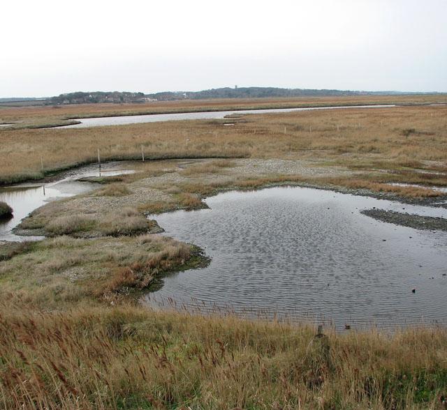 Saline lagoons